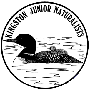 Youth Naturalists Logo